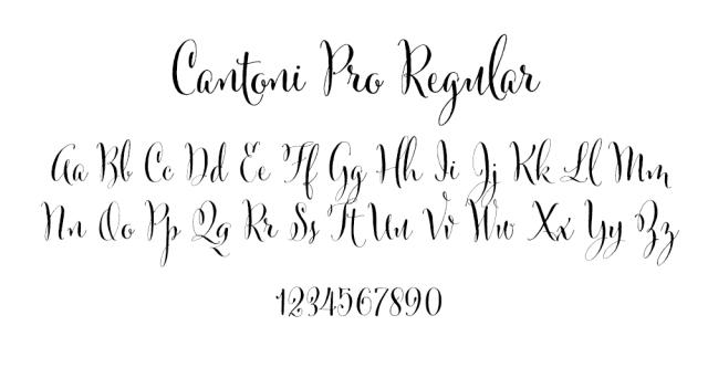 Cantoni Pro Regular .jpg